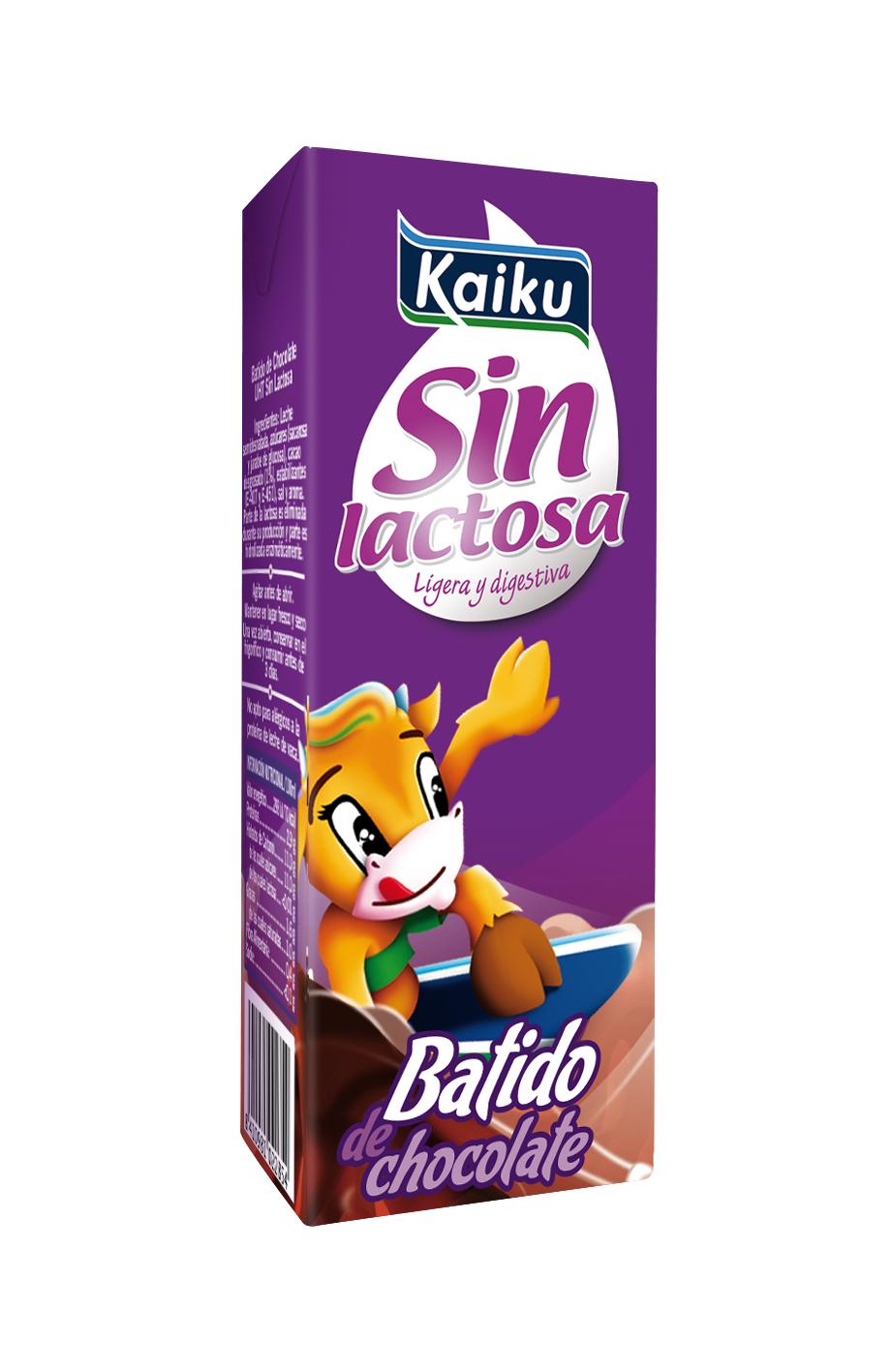SIMULACION BATIDO KSL 02