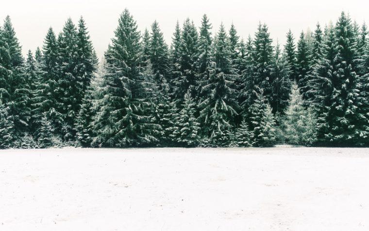 Estaciones de esquí y consejos para esquiar en el Día de la Nieve (y sin caerse)