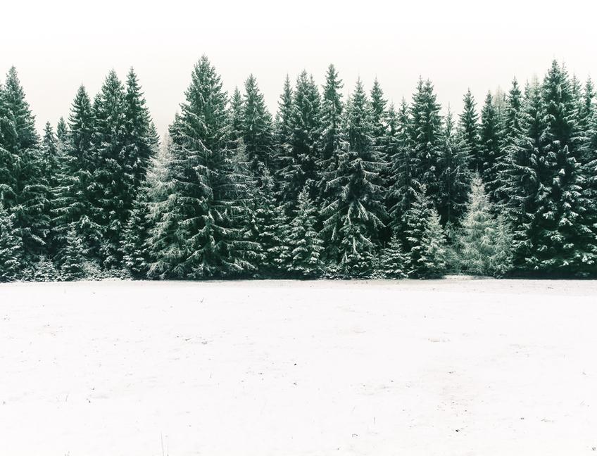 Estaciones de esquí y consejos para esquiar en el Día Mundial de la Nieve (y sin caerse)