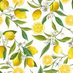 Receta de lemon pie sin lactosa, tarta de limón fácil