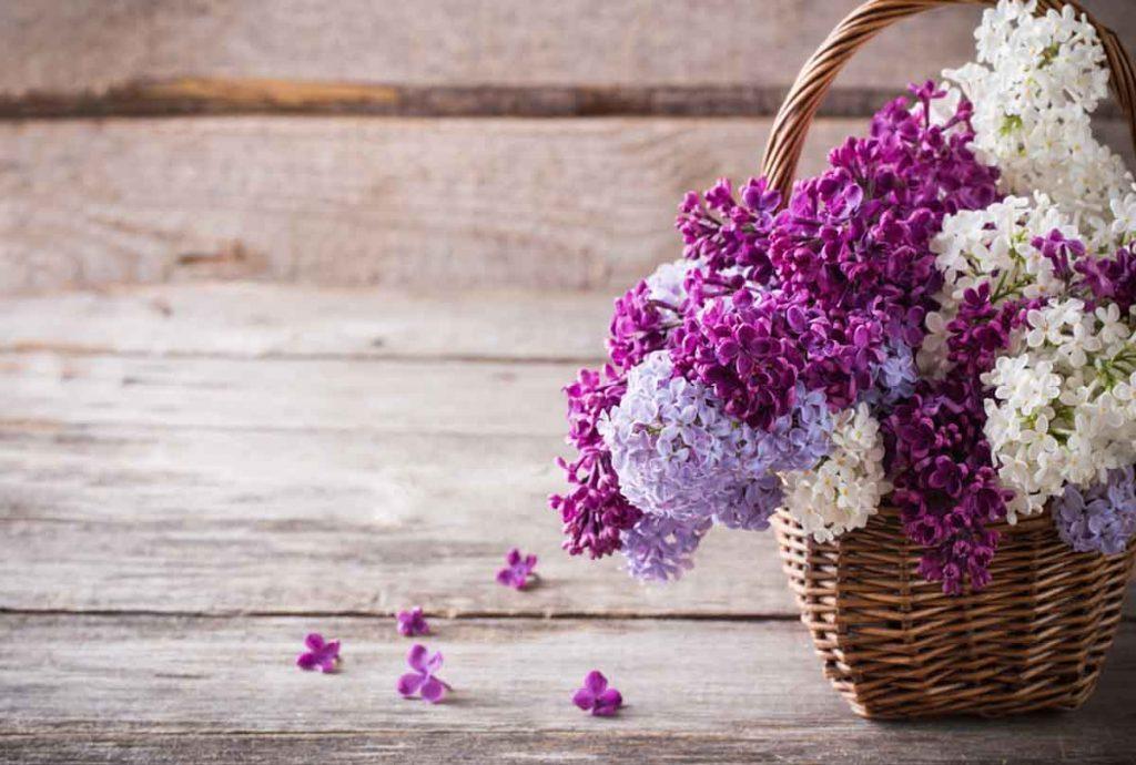 Decoración de primavera en casa: 5 trucos para que llegue por los 5 sentidos