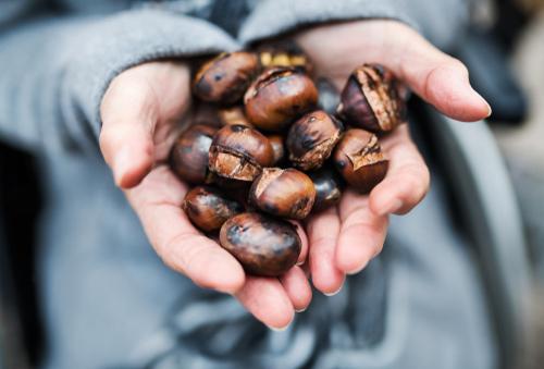 Recetas con castañas, disfruta del fruto de la temporada